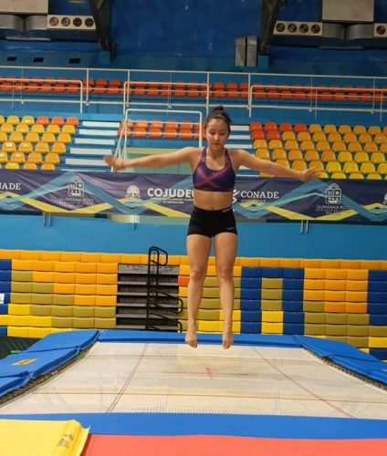 trampolin3-585x690-1-424x500.jpg